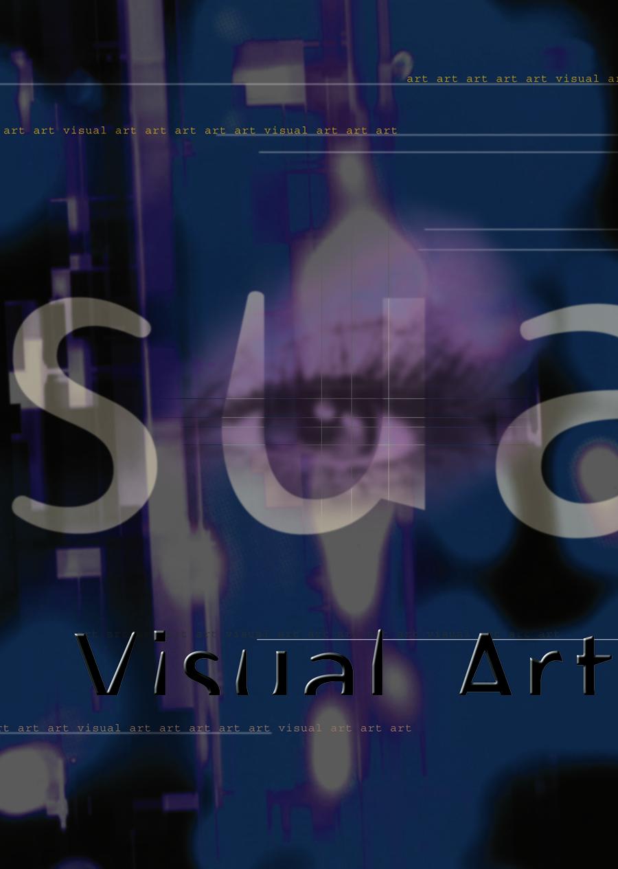 visualart02