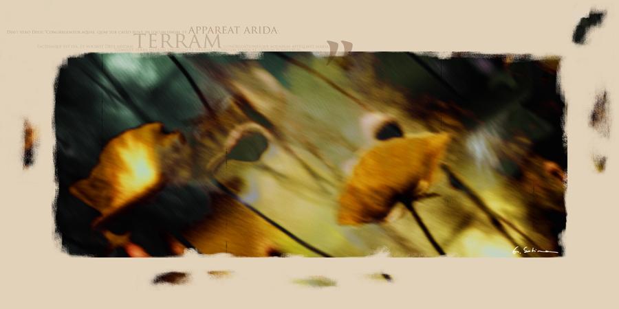 terra_poster_lat